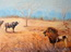 Lion contre buffle - Afrique du sud - technique mixte
